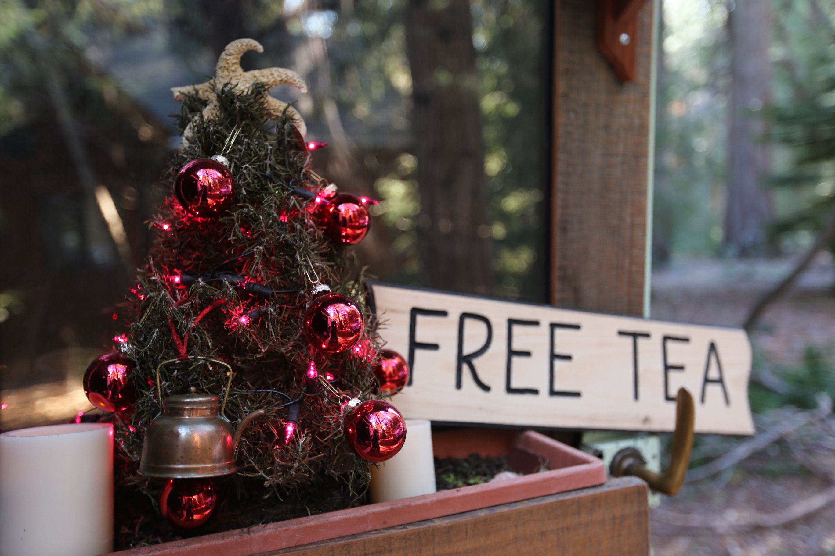 merry xmas! winter update – nevada city, ca | free tea party