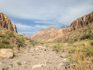 Hiking in Big Bend State Park up to Rancheria Falls.