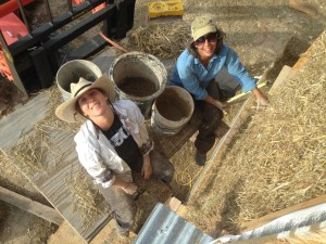 Jadi and Shannon cob cracks on the straw bale house.