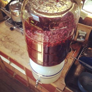 5 gallons of Hibiscus High ready for 4th of July weekend.