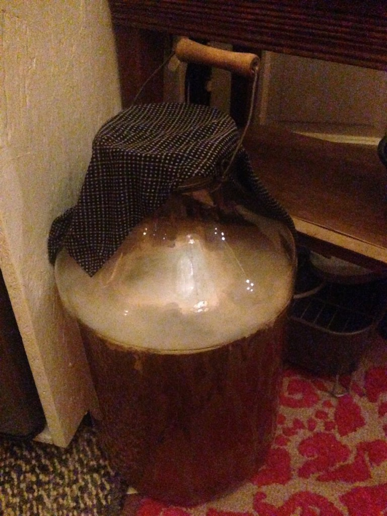 We found this 5 gallon wide-mouth glass jar in the 3rd floor of junk. It was perfect for making a large kombucha brew. This was the precursor to what is now two 15 gallon batches brewing to supply the kombucha on tap.